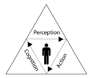 Fig. 3. Variable integration of perception