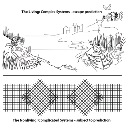 Figure 1. Semiotics at the threshold of complexity defining the living