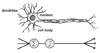 Fig. 17 The neuron machine