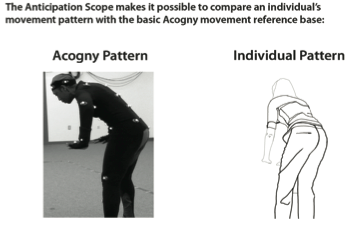 Figure 12. Comparing patterns of movement