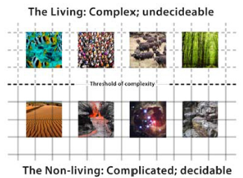 Figure 13: The decidable as criterion for complexity