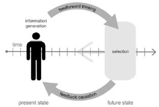 Figure 2. Feedback and feed-forward.