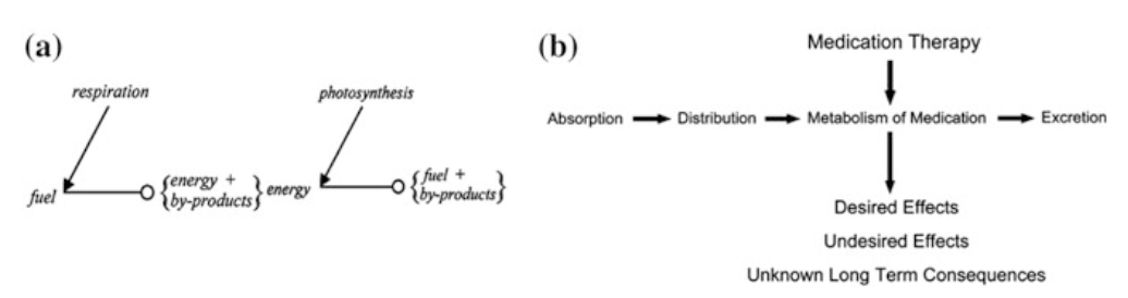 Fig. 5 a Natural processes have multiple outcomes (image courtesy of Louie [44]). b Example of multiple outcomes related to medication