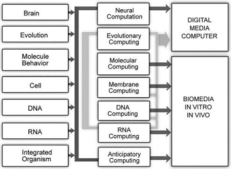 Fig. 1 Biologically inspired forms of computation.